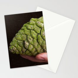 Pine Cone Gathering in California Stationery Cards