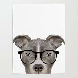Pit bull with glasses Dog illustration original painting print Poster