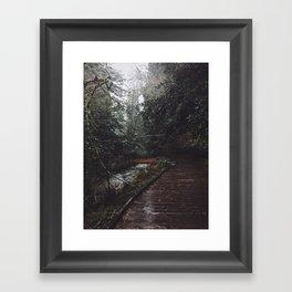 Bridge Over Troubled Waters Framed Art Print