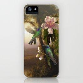 Sparkling Violetear Hummingbirds iPhone Case