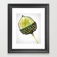 acorn Framed Art Print
