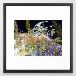 Leafy Sea Dragon at Birch Aquarium Framed Art Print