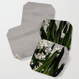 Hyacinth background Coaster