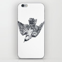 This bird is called a splendid starling iPhone Skin