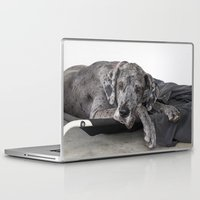 great dane Laptop & iPad Skins featuring Great Dane waiting by Deborah Janke