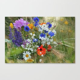 Wildflowers in a summer meadow Canvas Print