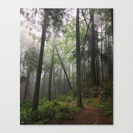 Return of the Fog Canvas Print