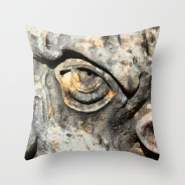 Stone Monster's eye Throw Pillow