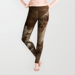 The Valley of Ashes - The Great Gatsby Leggings