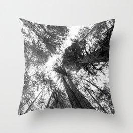 Muir Woods - California Throw Pillow
