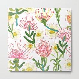 pincushion proteas Metal Print