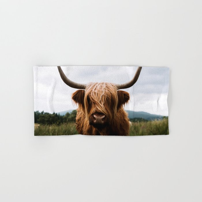 Scottish Highland Cattle in Scotland Portrait II Hand & Bath Towel