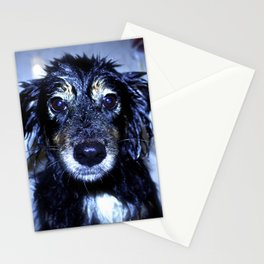 Wet Jamie Stationery Cards