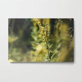 Mountain Meadows 02 Metal Print