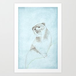 Olinguito in the Cloud Forest Art Print