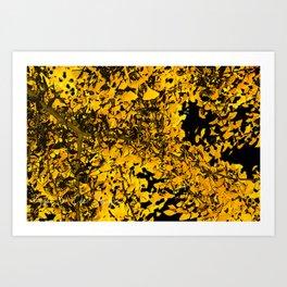 Ginko Leaves In California Art Print