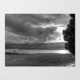 Dias grises Canvas Print