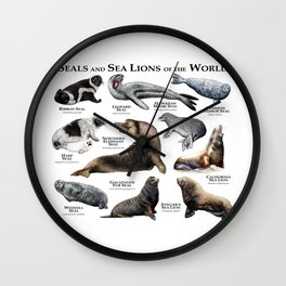 Seals and Seal Lions of the World Wall Clock