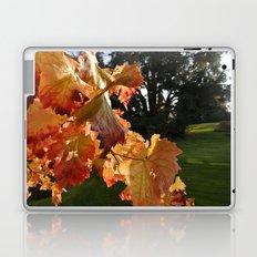 Autumn Grape Leafs Laptop & iPad Skin