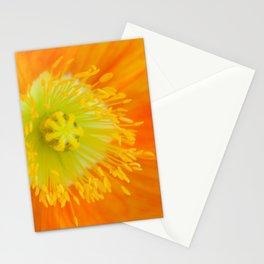 Orange Poppy in February 4 Stationery Cards