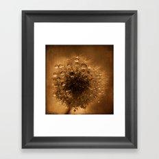 dandelion rust Framed Art Print
