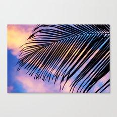 SUNSET PALM Canvas Print