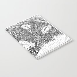 asc 376 -  Les prédatrices (Predatory mammals) Notebook