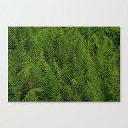 Green Space Canvas Print