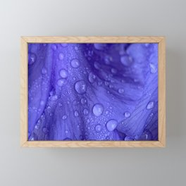 Iris Framed Mini Art Print
