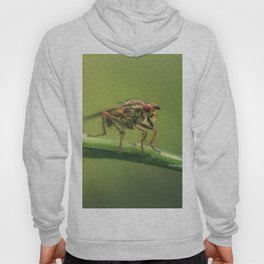The monsters are others Hoody