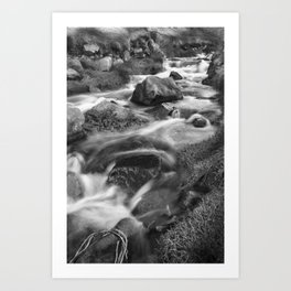 The Stream, Cot Valley, Cornwall, England, United Kingdom Art Print