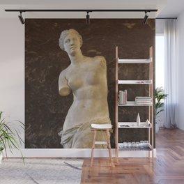 Venus de Milo Wall Mural