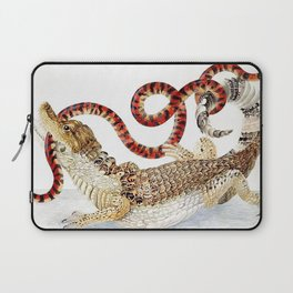 Spectacled Caiman and a False Coral Snake by Maria Sibylla Merian c.1705-10 // Wild Animals Decor Laptop Sleeve