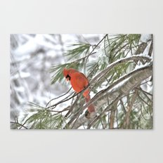 Snow Globe Cardinal Canvas Print