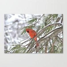 Snow Globe Cardinal Canvas Print