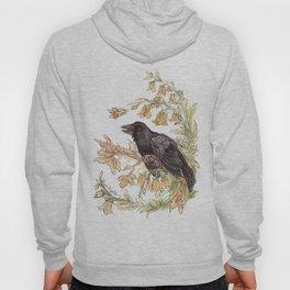 Autumnal Equinox Crow Bellflowers Hoody