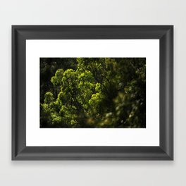 Narrow Disocovery Framed Art Print