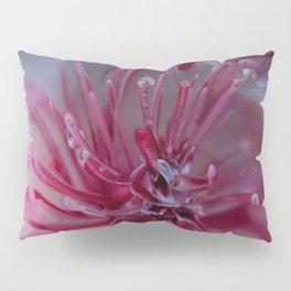 Frozen Sea Urchin Pillow Sham