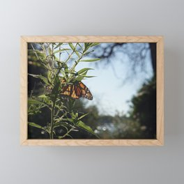 camping idyll Framed Mini Art Print