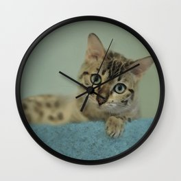 Cute Things Come in Kitty Packages Wall Clock