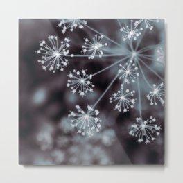 The Stars for You. Botanical Macro Abstract Metal Print