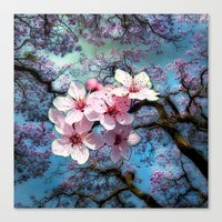 cherry blossoms Canvas Prints featuring Cherry Blossoms by Just Kidding