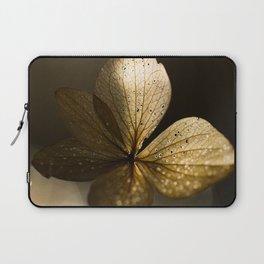 Autumn Scene - Dry Petals with Golden Sunset Light #decor #society6 #buyart Laptop Sleeve