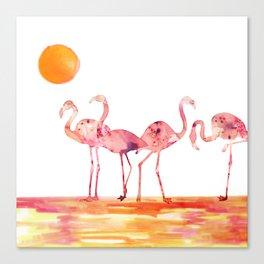 The Wading Flamingos Canvas Print
