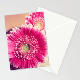 Pink Gerber Daisies  Stationery Cards