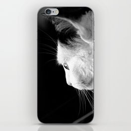 Black & White Cat iPhone Skin