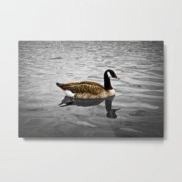 Goose 01 Metal Print