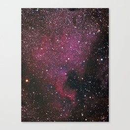 The North American Nebula Canvas Print