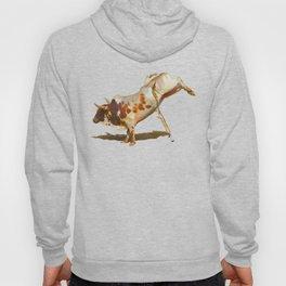 It's All Bull! - Bucking Rodeo Bull Hoody