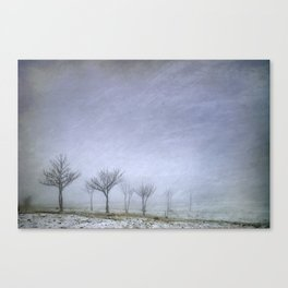 Stormy wheather Canvas Print